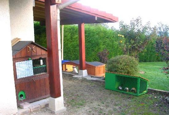 Coté abri de jardin (mai 2009)